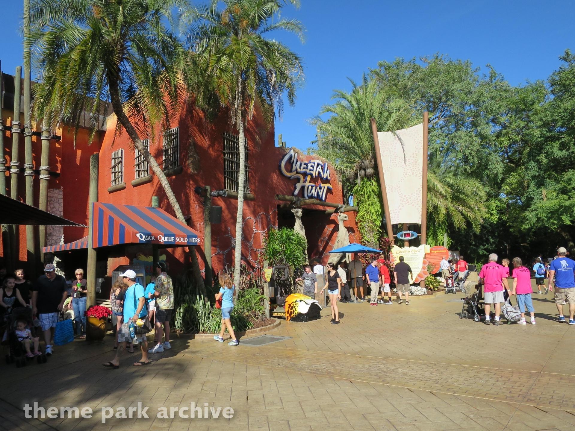 Cheetah Hunt at Busch Gardens Tampa