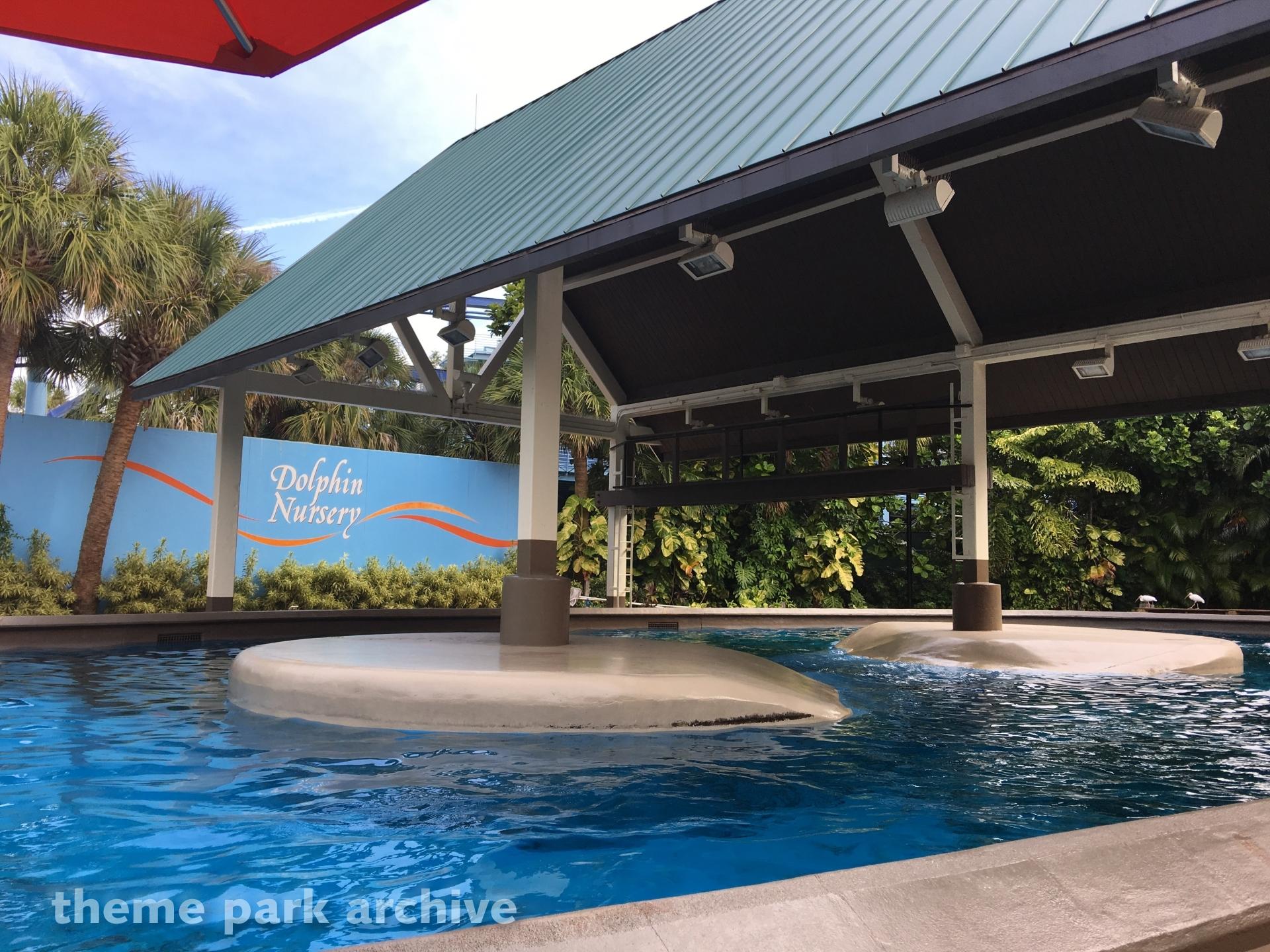 Dolphin Nursery at SeaWorld Orlando