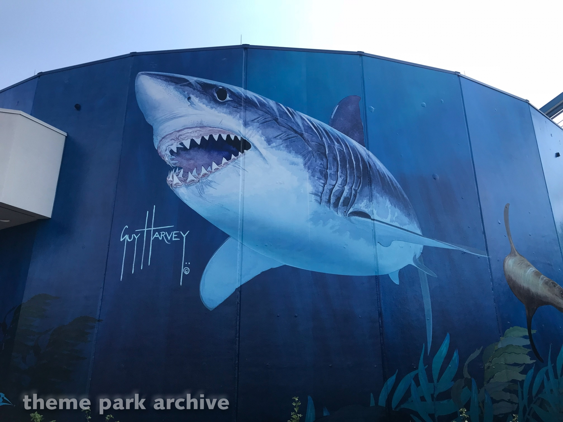 The Great White at SeaWorld San Antonio