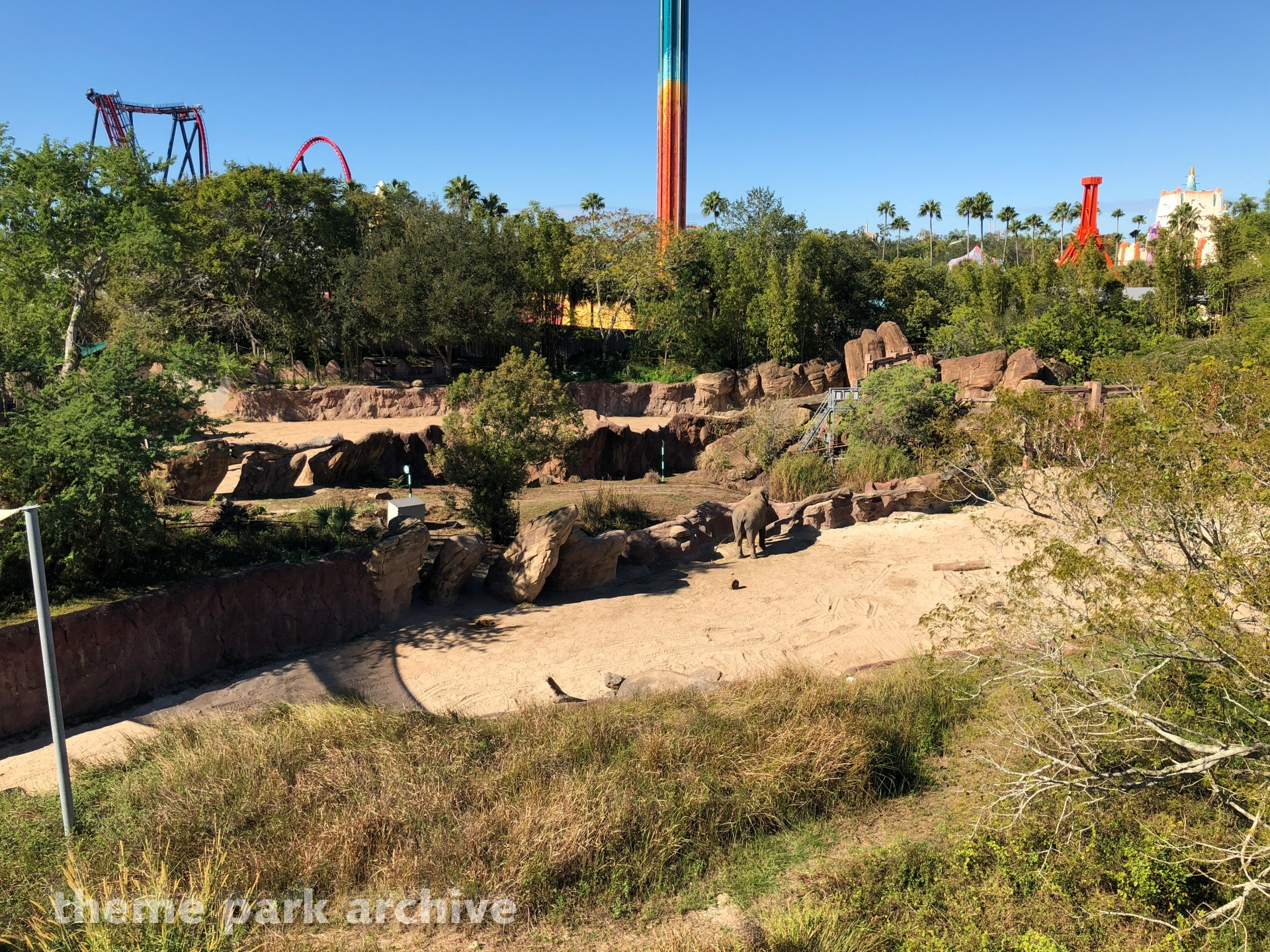 Serengeti Plain at Busch Gardens Tampa | Theme Park Archive