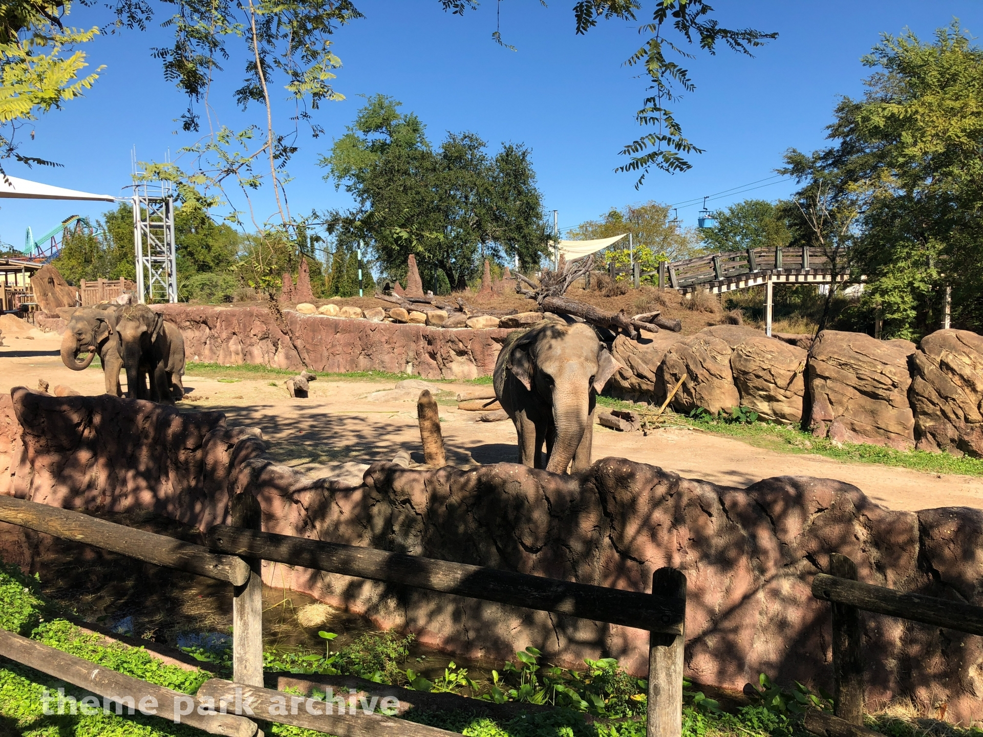 Edge of Africa at Busch Gardens Tampa | Theme Park Archive