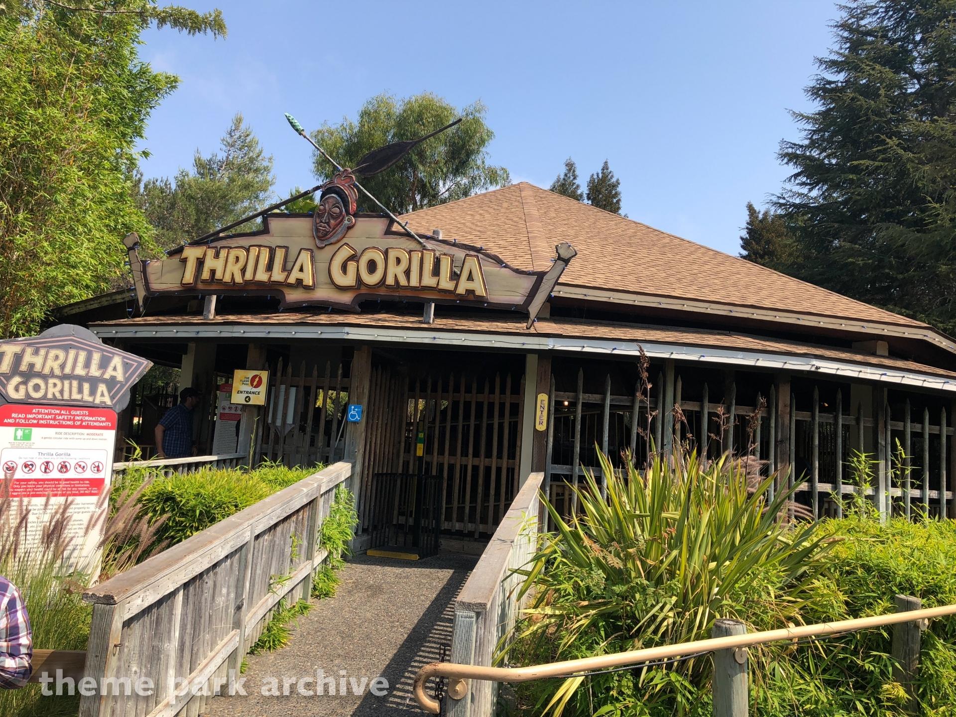 Thrilla Gorilla at Six Flags Discovery Kingdom
