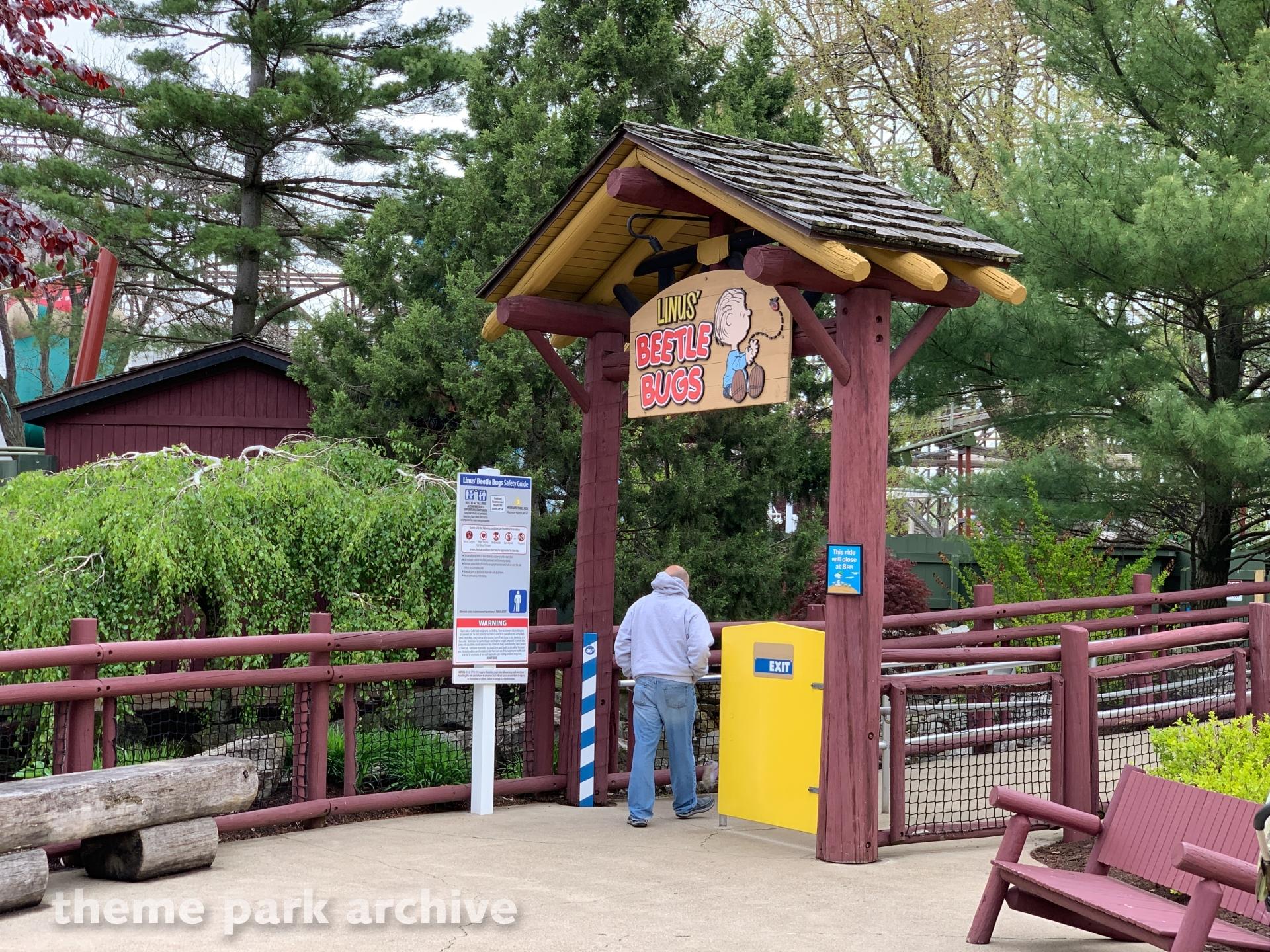 Linus Beetle Bugs at Cedar Point
