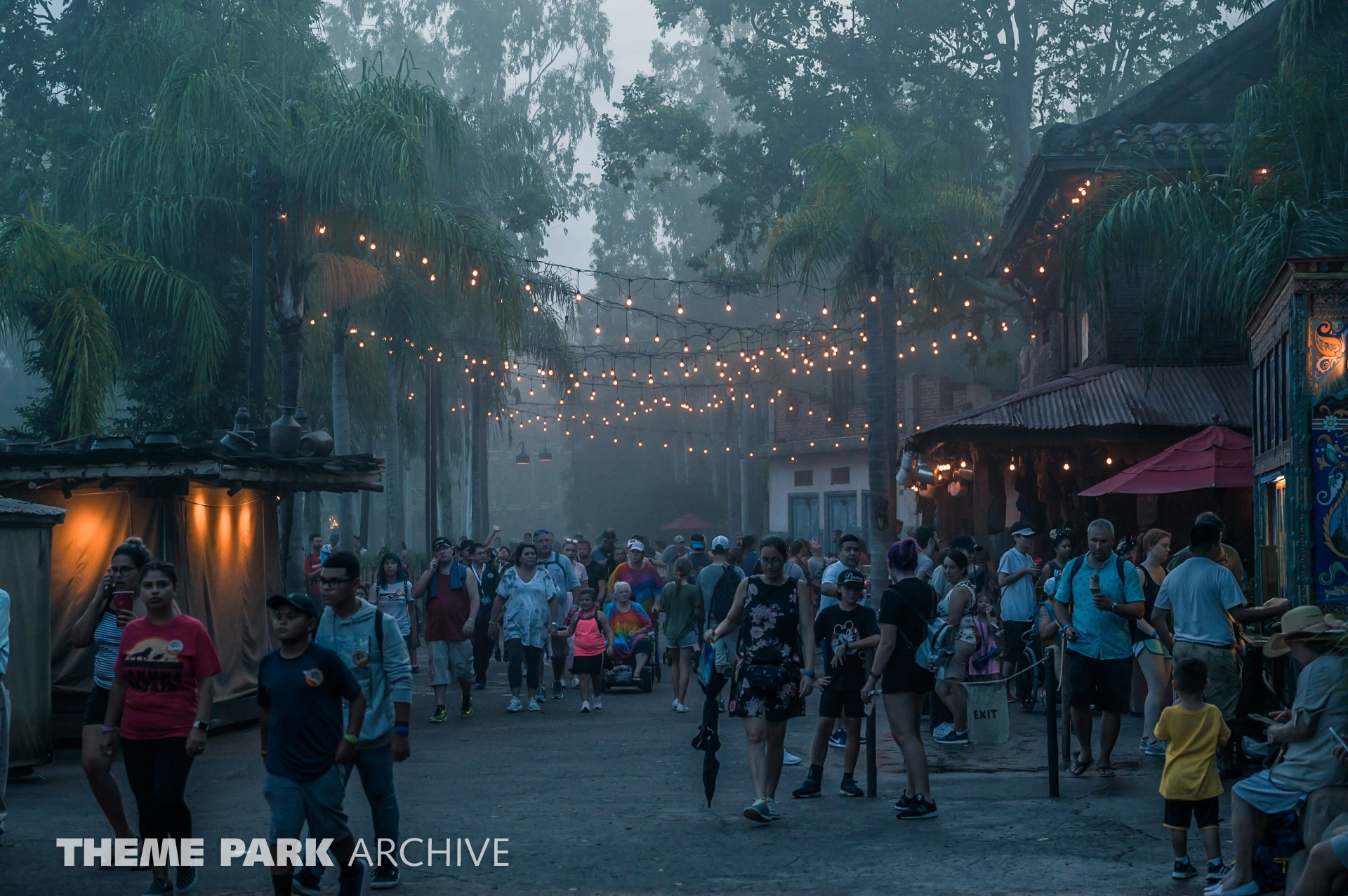 After Hours at Animal Kingdom