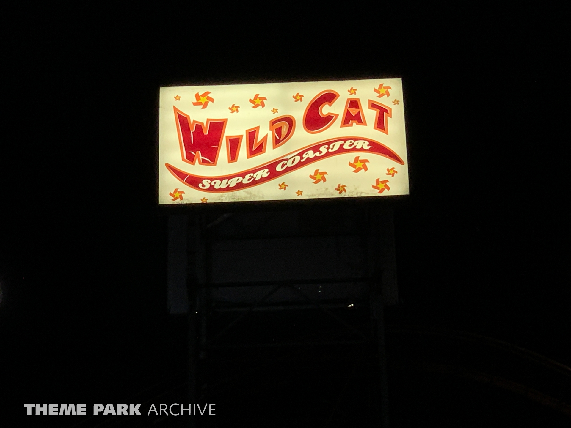 Wild Cat at Washington State Fair