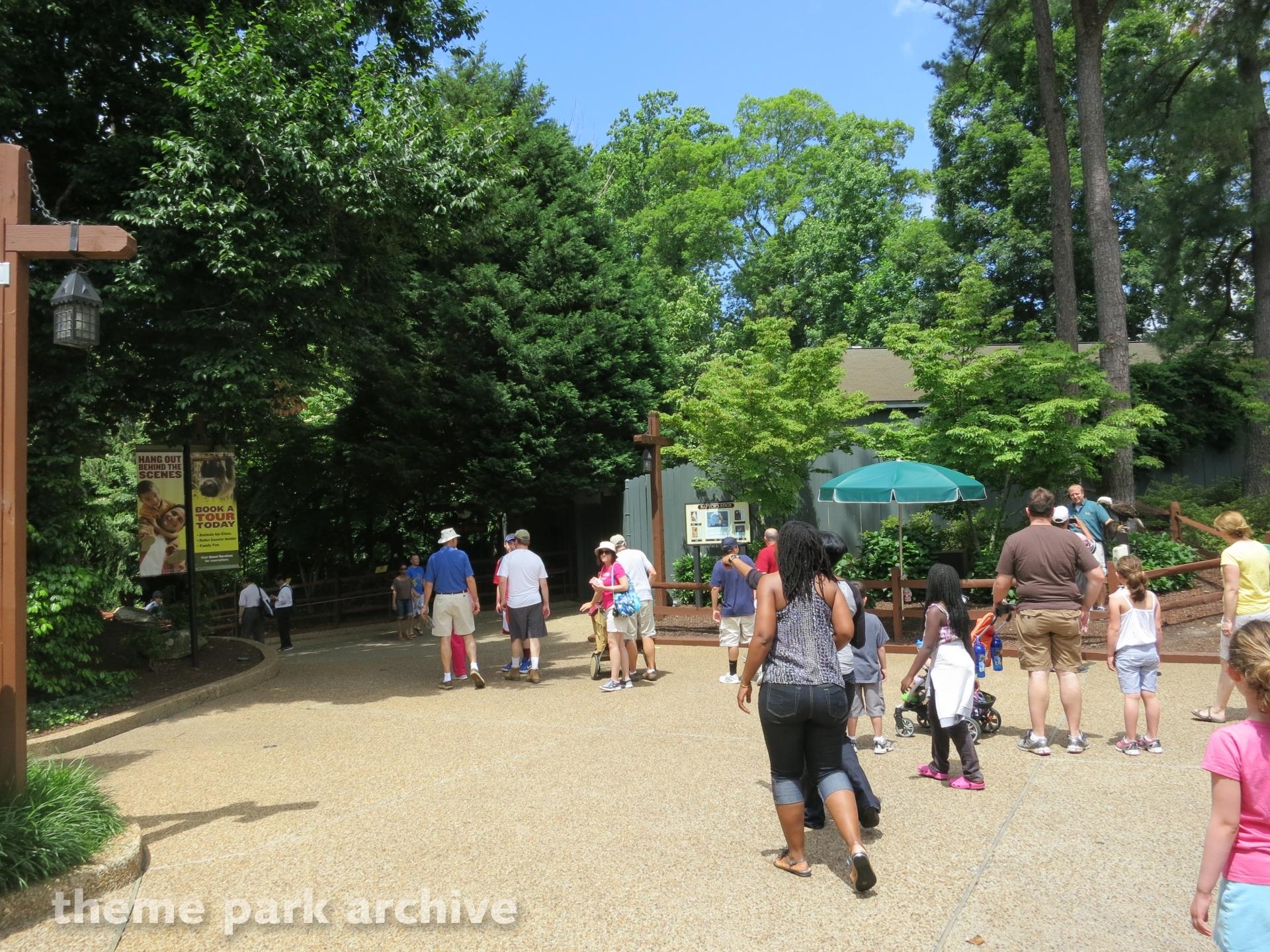 Ireland at Busch Gardens Williamsburg