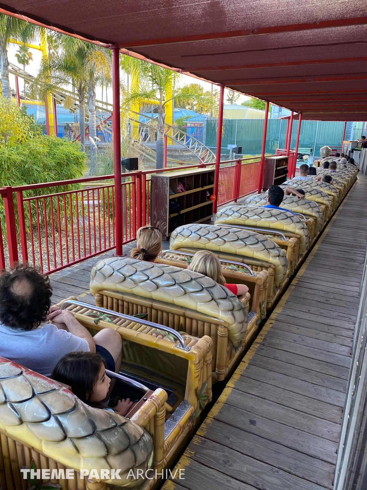 Cobra at Six Flags Discovery Kingdom