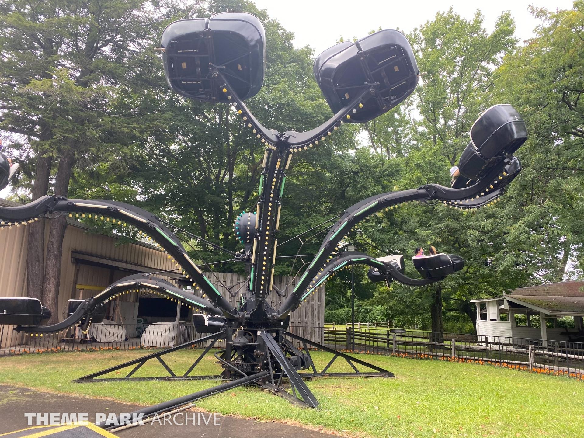 Spider at Waldameer Park
