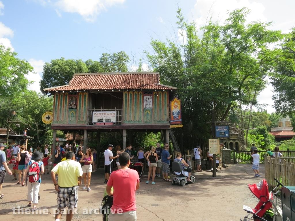Kali River Rapids at Disney's Animal Kingdom