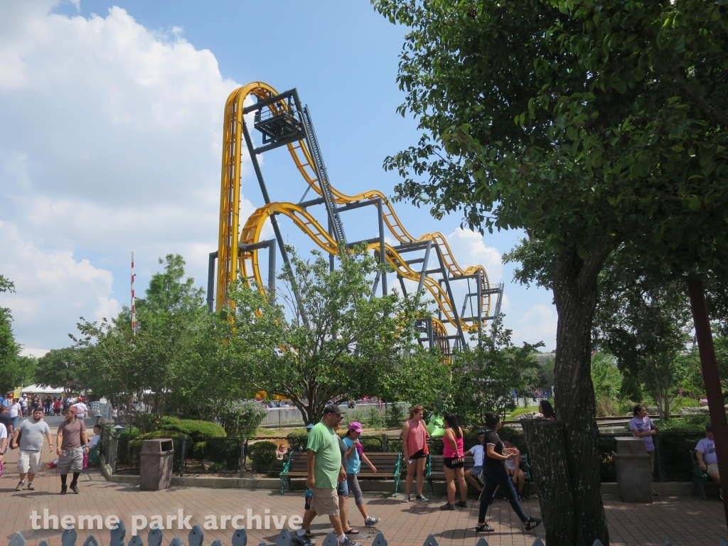 Batman: The Ride at Six Flags Fiesta Texas