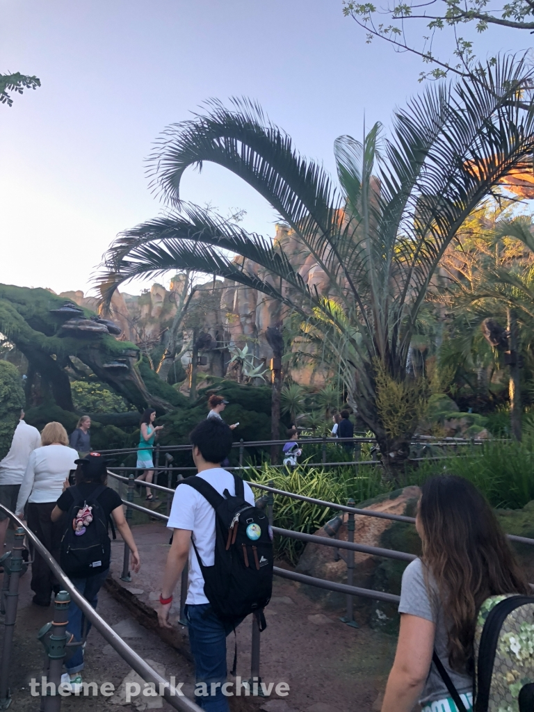 Avatar Flight of Passage at Disney's Animal Kingdom
