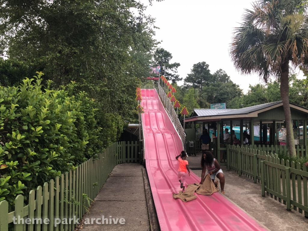 Toucan Alley at Wild Adventures