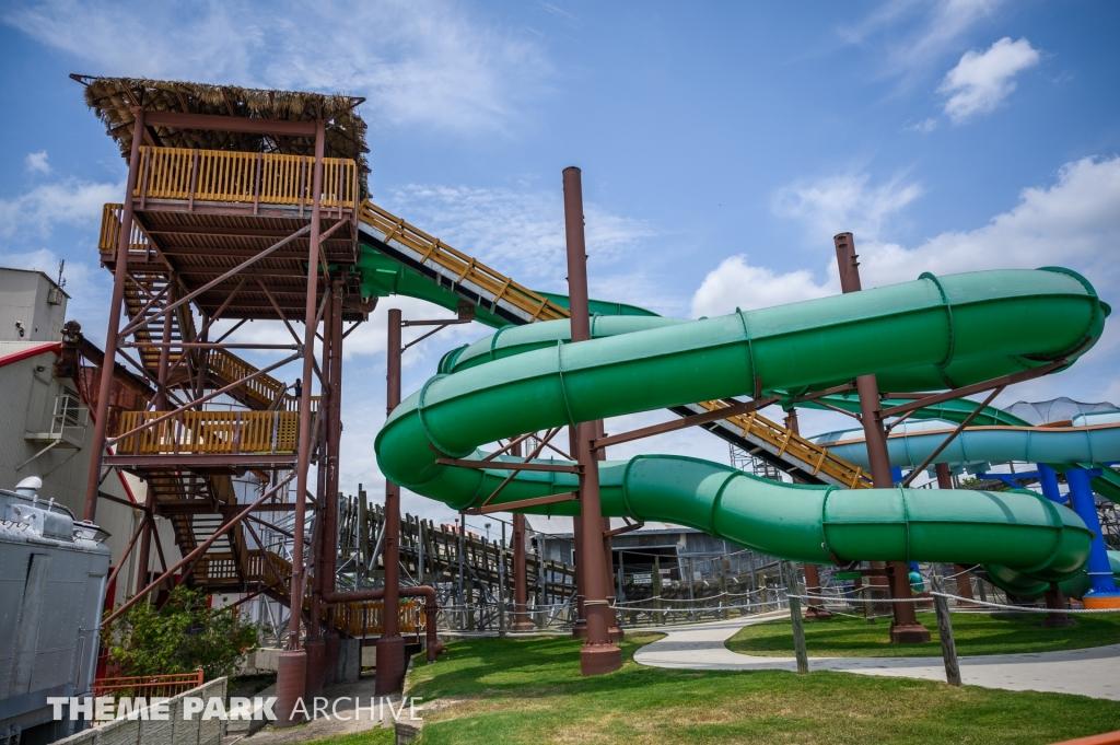 Viper at ZDT's Amusement Park