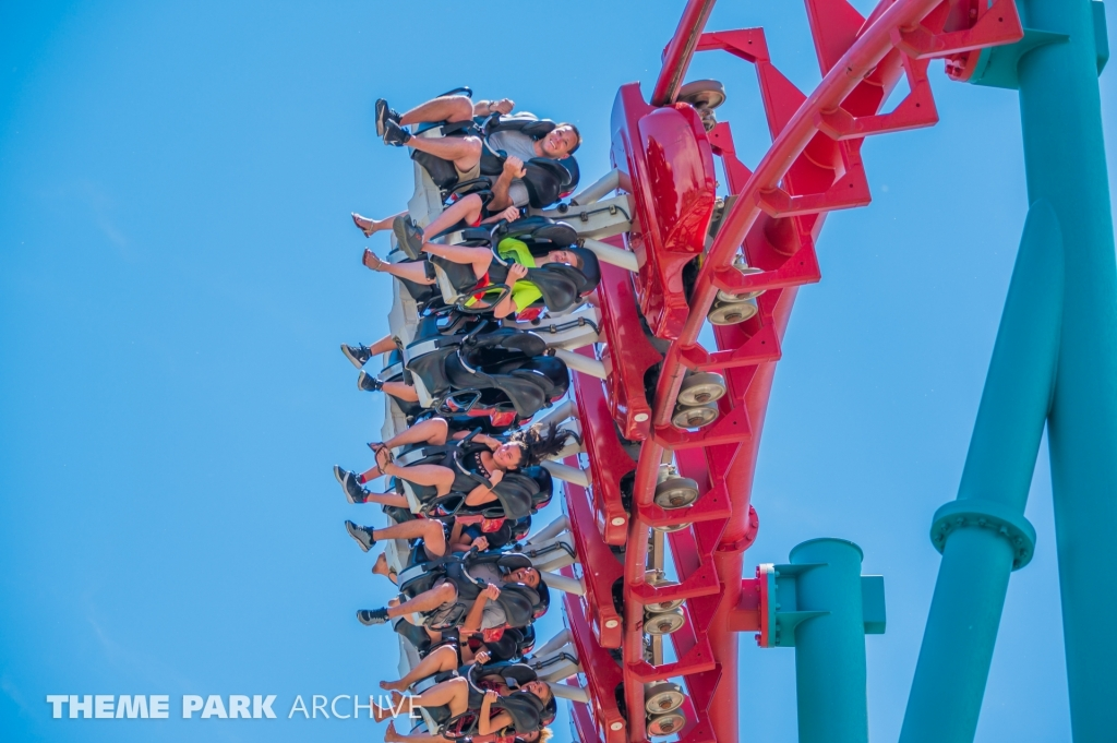 Mind Eraser at Elitch Gardens