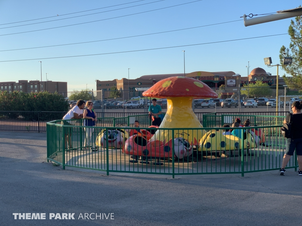 Granny Bugs at Western Playland
