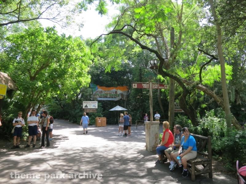 Pangani Forest Exploration Trail at Disney's Animal Kingdom