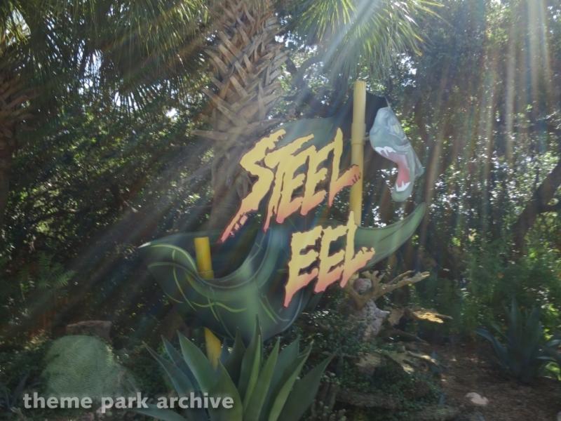 Steel Eel at SeaWorld San Antonio