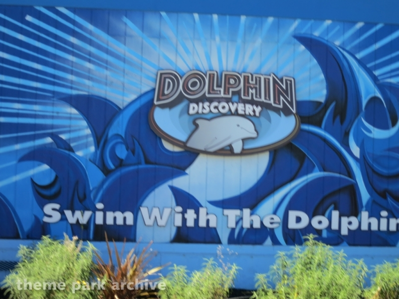 Dolphin Discovery at Six Flags Discovery Kingdom