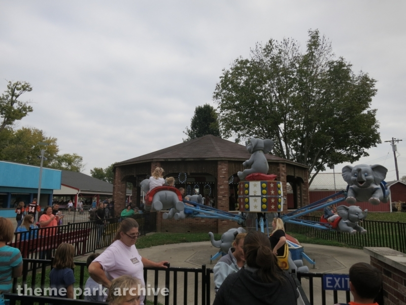 Elephants at Stricker's Grove