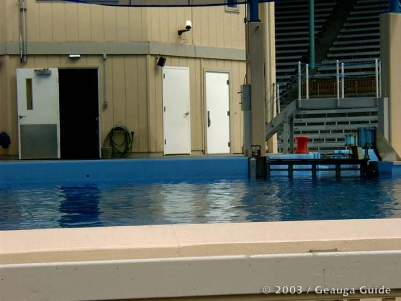 Killer Whale Stadium at Geauga Lake