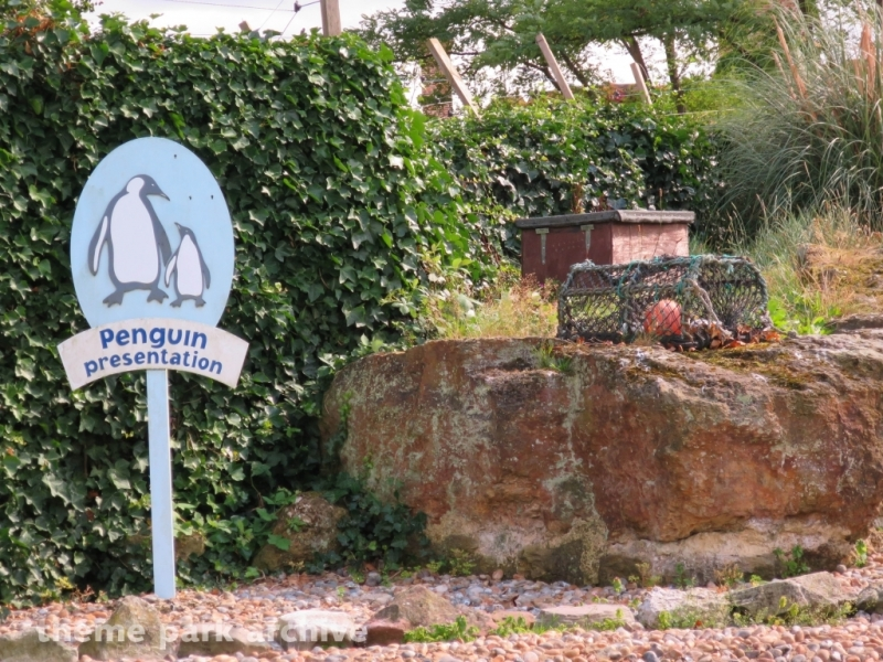 Penguin Cove at Chessington World of Adventures Resort