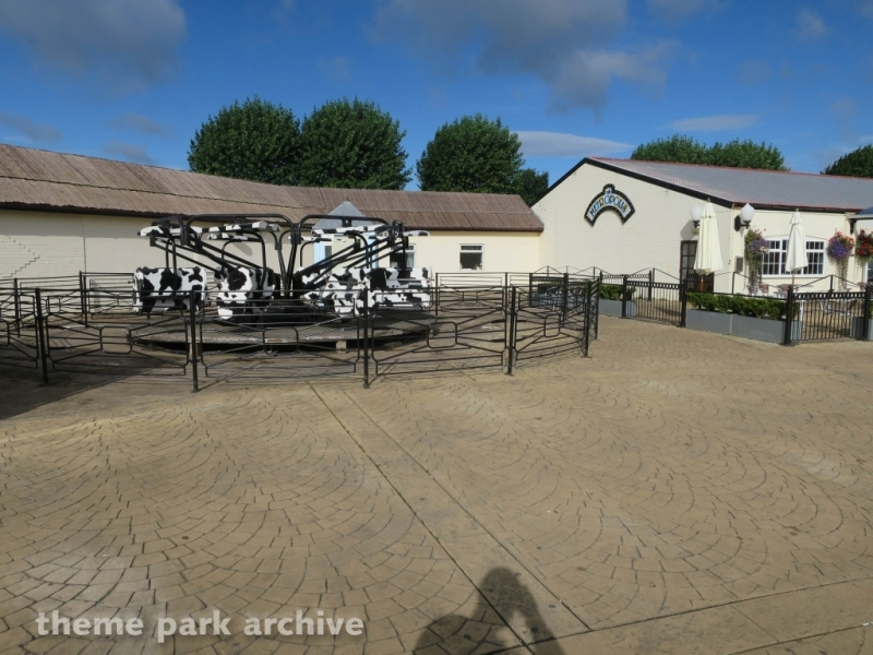 Spotted Cow Ride at Flamingo Land