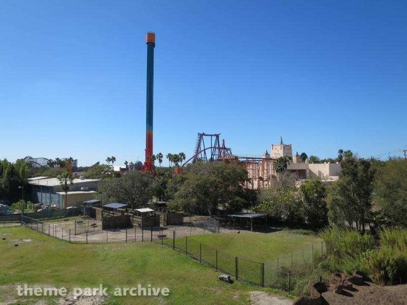 Falcon's Fury at Busch Gardens Tampa