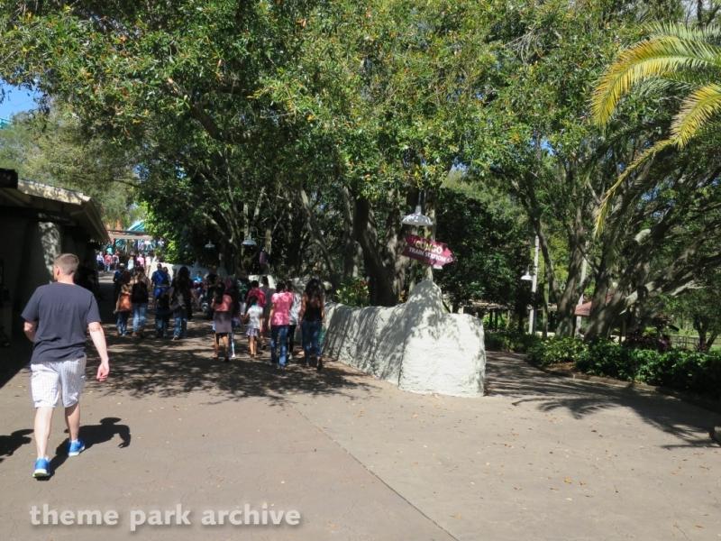 Congo at Busch Gardens Tampa