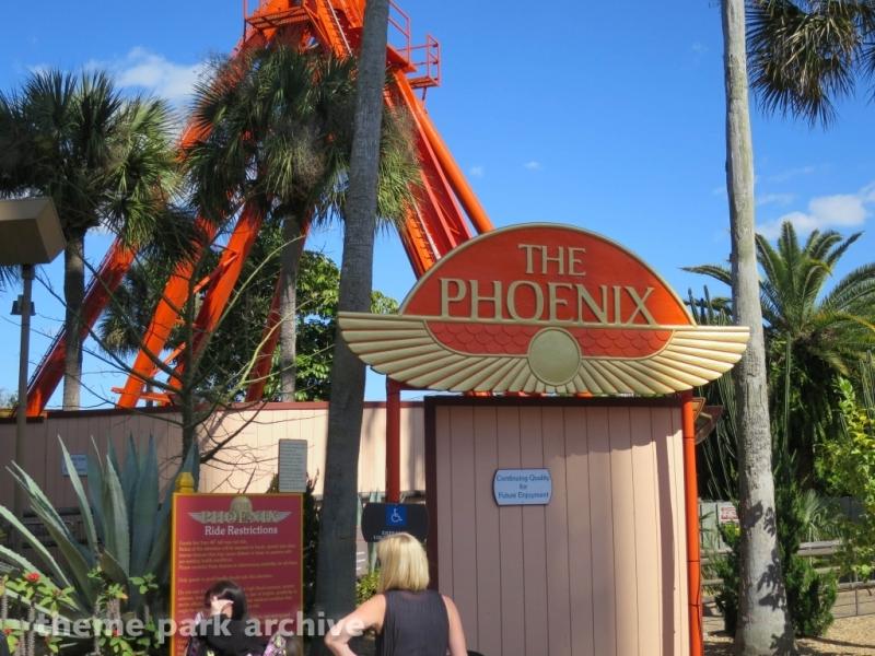 Phoenix at Busch Gardens Tampa