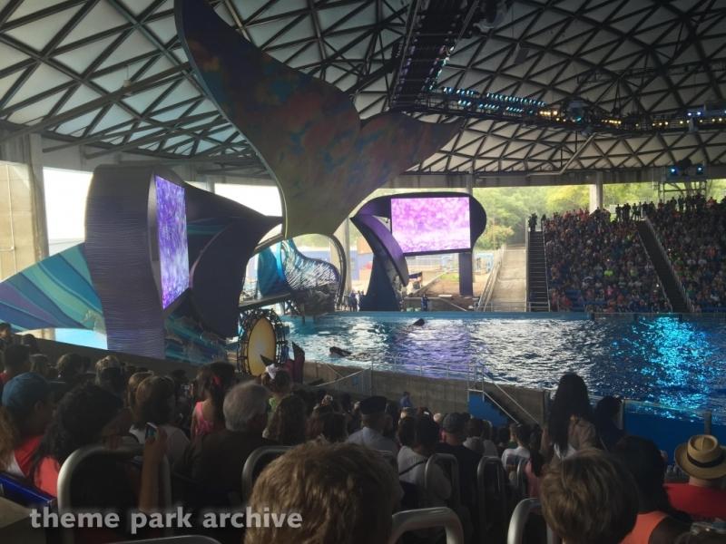 Shamu Theater at SeaWorld San Antonio