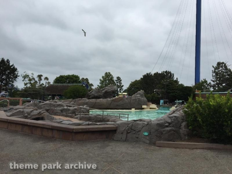 Dolphin Point at Sea World San Diego