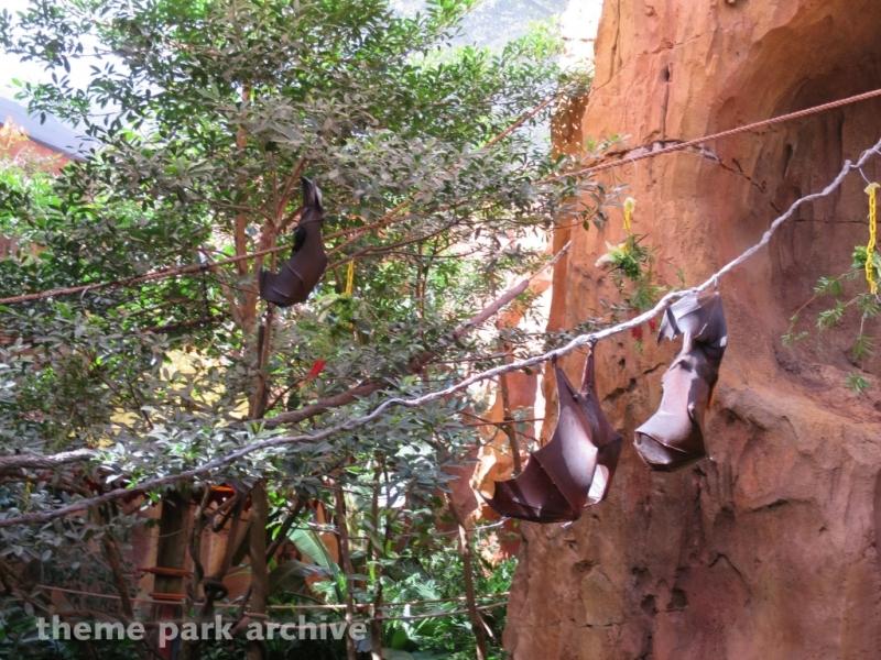 Maharajah Jungle Trek at Disney's Animal Kingdom