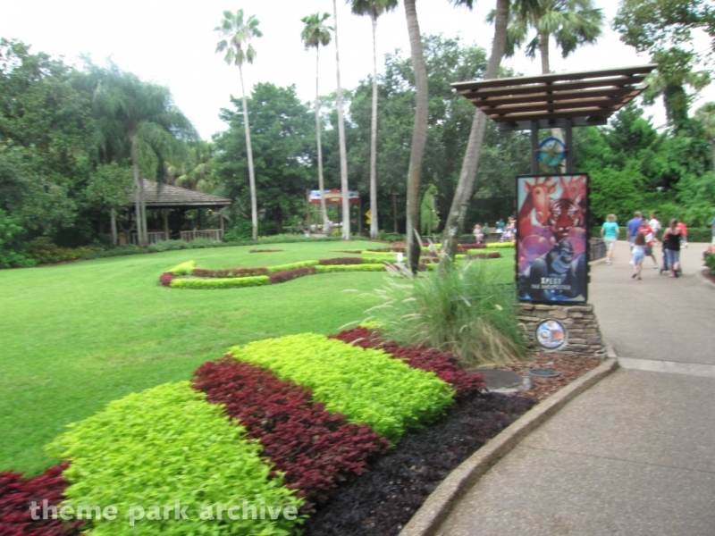Bird Gardens at Busch Gardens Tampa