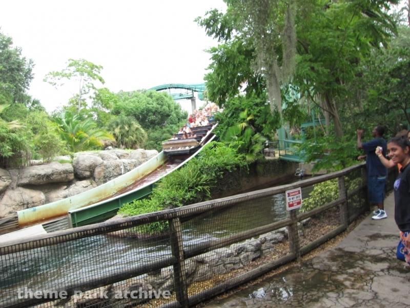 Stanley Falls Flume at Busch Gardens Tampa