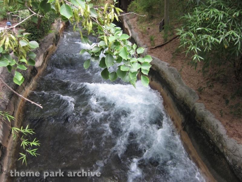 Congo River Rapids at Busch Gardens Tampa