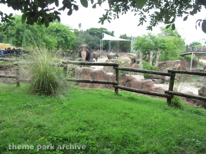 Nairobi at Busch Gardens Tampa