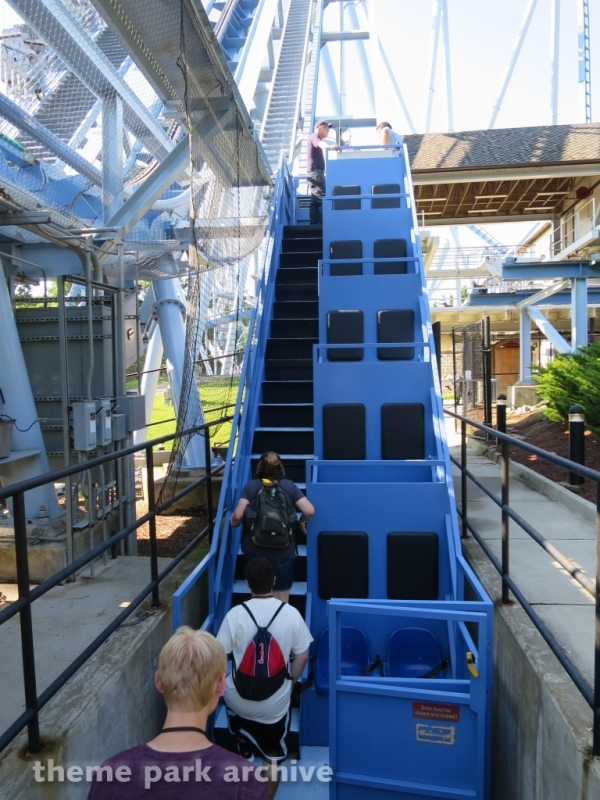 Griffon at Busch Gardens Williamsburg