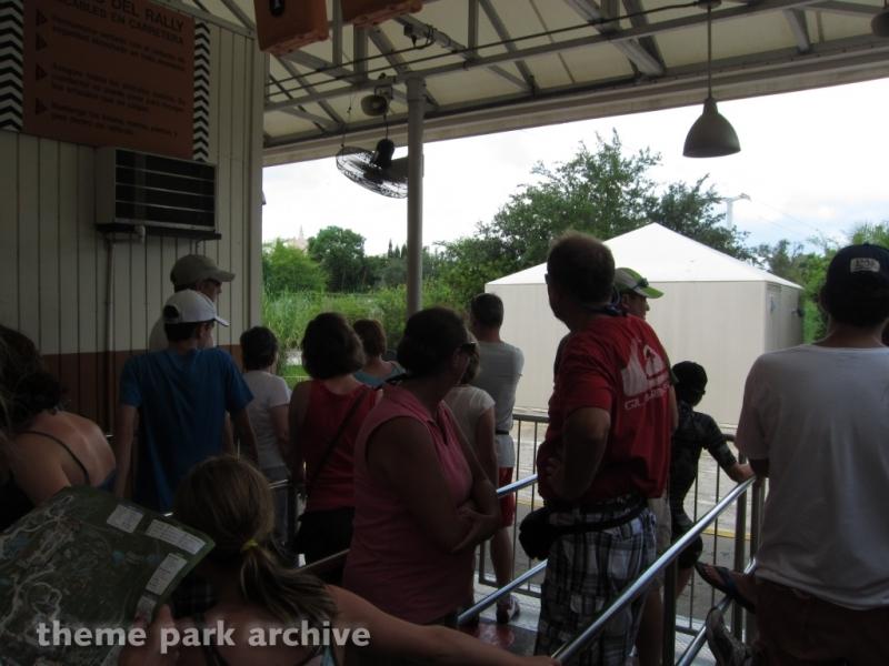 Rhino Rally at Busch Gardens Tampa