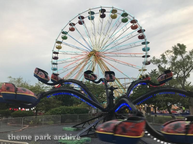 Spyder at Jolly Roger 30th Street Amusement Park