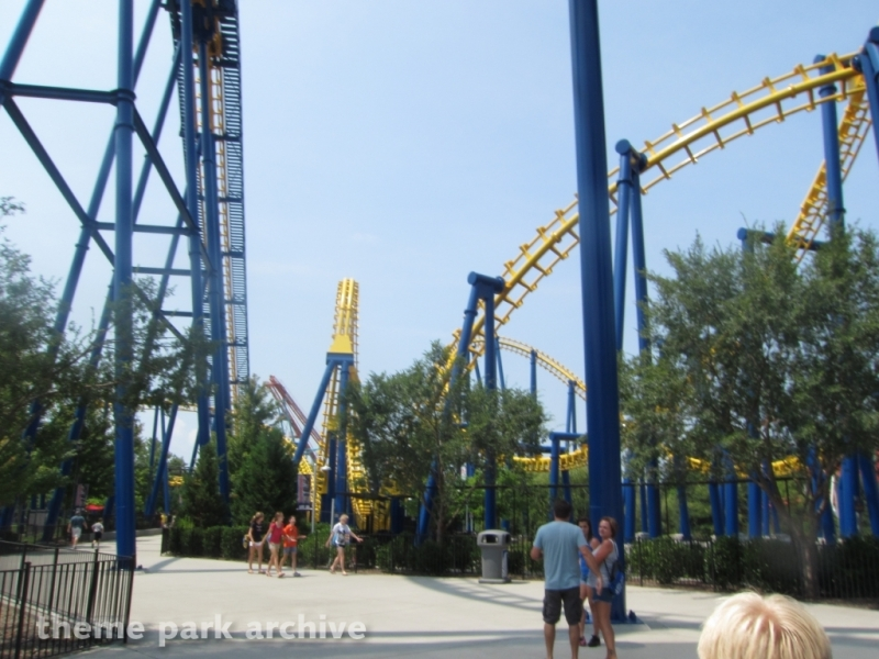 Nighthawk at Carowinds
