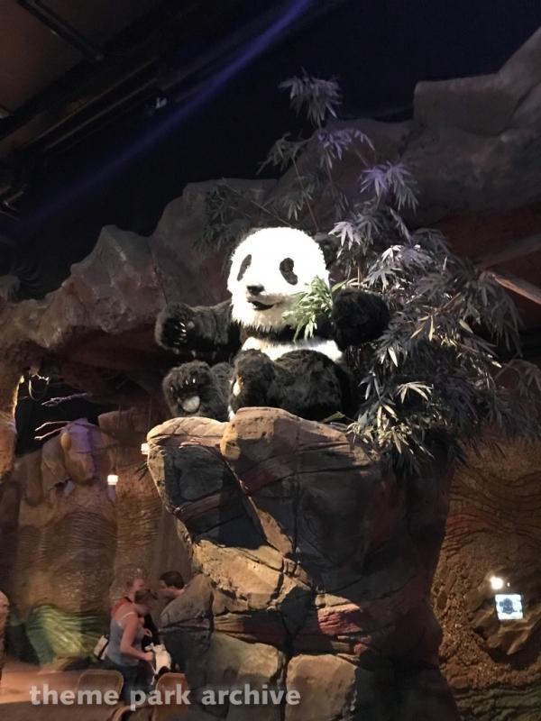 Panda Droom at Efteling