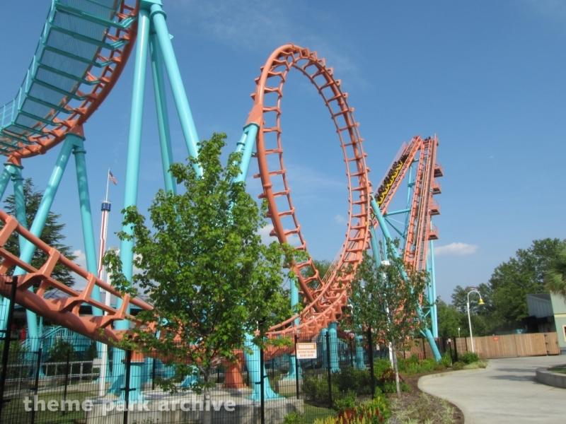The Flying Cobras at Carowinds