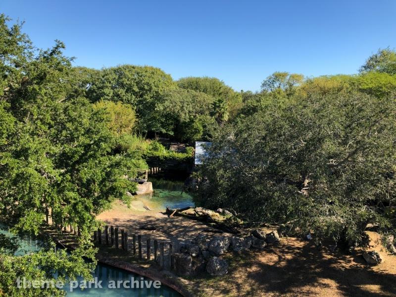 Serengeti Plain at Busch Gardens Tampa