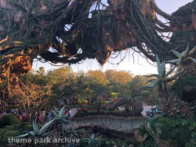 Avatar Flight of Passage at Disney's Animal Kingdom