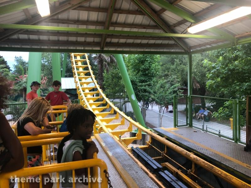 Boomerang at Wild Adventures