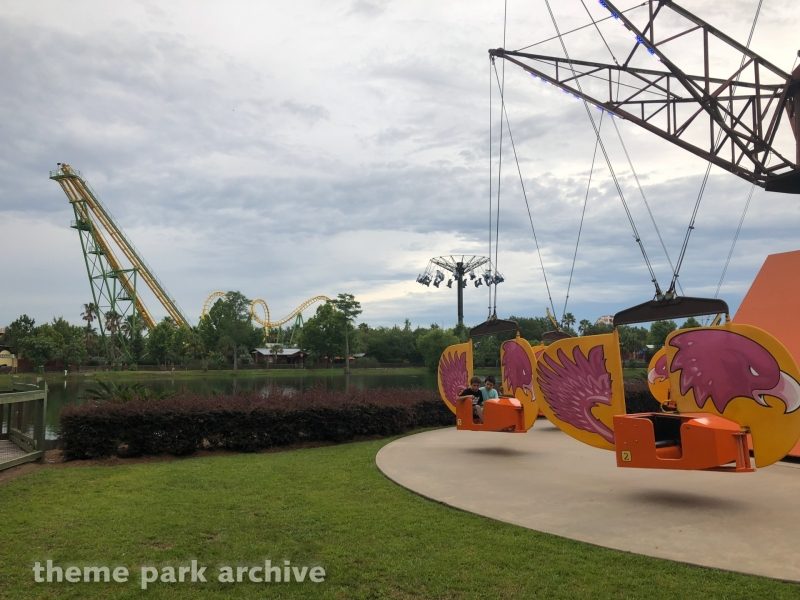 Falcon Flyer at Wild Adventures