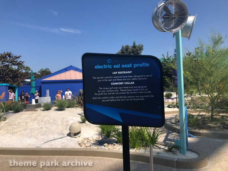 Electric Eel at Sea World San Diego