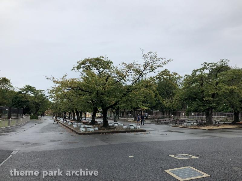 Higashiyama Zoo and Botanical Gardens 2018