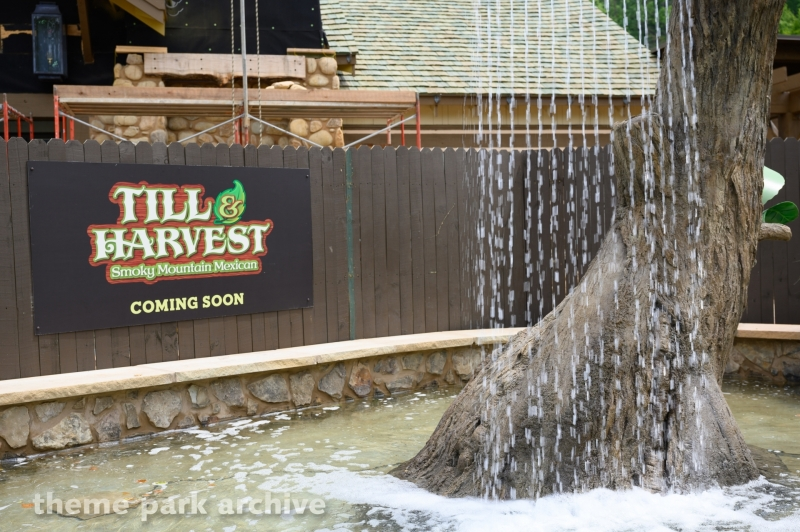 Wildwood Grove at Dollywood