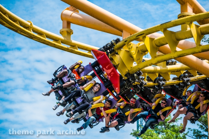 Flying Ace Aerial Chase at Kings Island